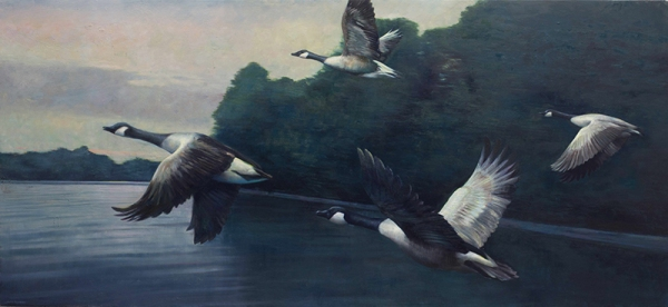 "Chris Flodberg, ""Four Geese"" 2015, oil on canvas, 42x90 in."